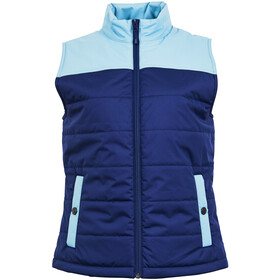 United By Blue Bison Puffer Chaleco Mujer, navy